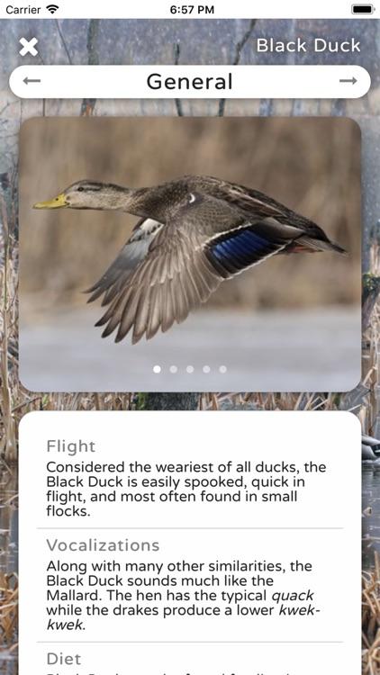 Duck ID App Premium
