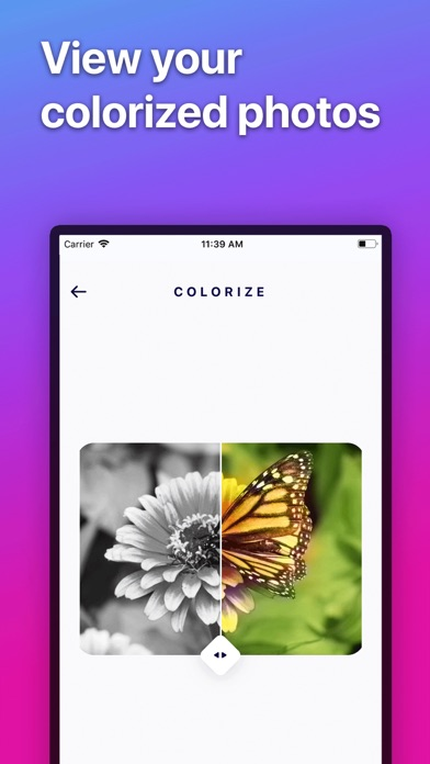 Download Colorize - Color B&W Photos for Pc