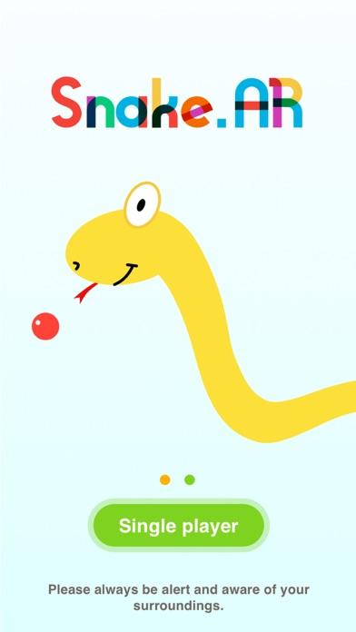 Snake.AR Screenshot on iOS