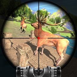 Deer Hunting Expert Challenge