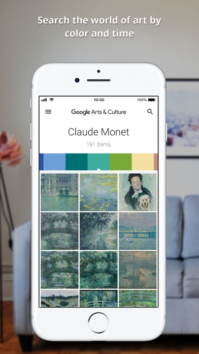 Screenshot of Google Arts & Culture App