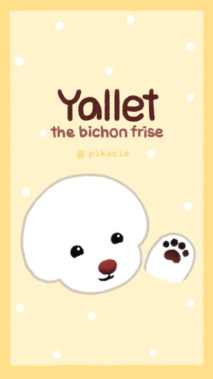 Yallet the bichon (taster)