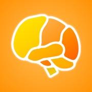 Brain App XL