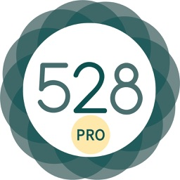 528 Player Pro