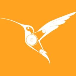 BirdBlox