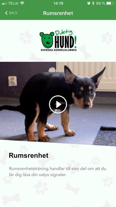 Screenshot for Duktig Hund! in Sweden App Store