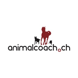 Dog Training Animalcoach.ch ZH