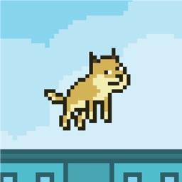 Flappy Doge #1