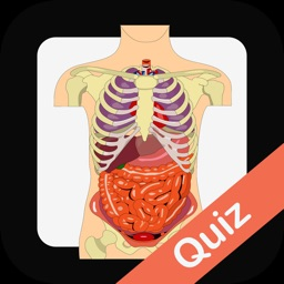 Human Biology Quiz Trivia