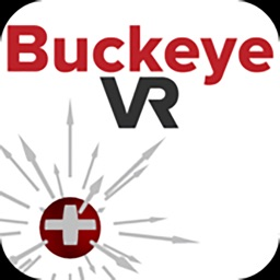 BuckeyeVR Electric Field VR
