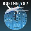 B787 Cockpit Pilot Trainer