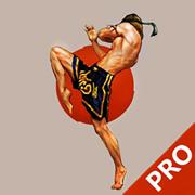 泰拳速成—视频教程