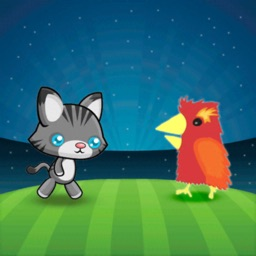 Ultimate Race of Chicken & Cat