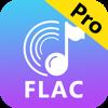 Any FLAC Converter-MP3/ALAC