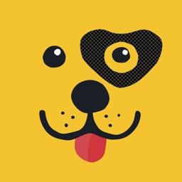 Pets Rule! Stickers