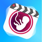 BellyMotion icon