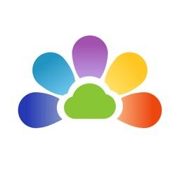 开云健康 - 专业的健康管理App