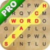 Word Search Words Scramble Pro