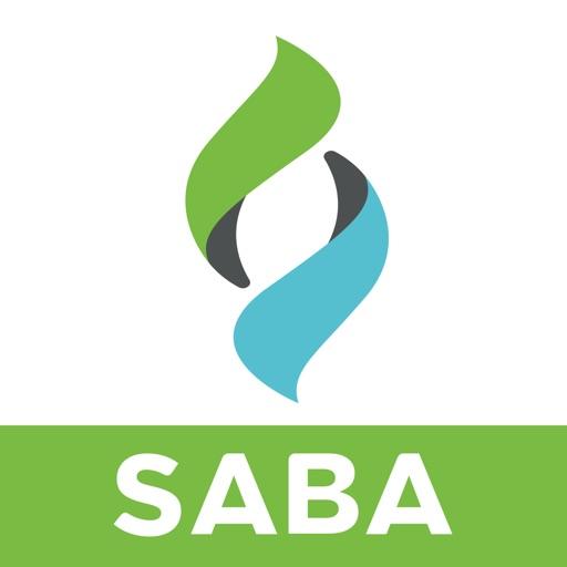 Saba Meeting