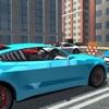 Maze Parking: Driving Skill