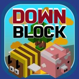 Down Block