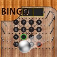 Codes for BingoPinball2018 Hack