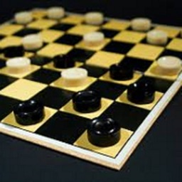 Checkers -Professional version
