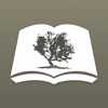 NRSV Bible by Olive Tree
