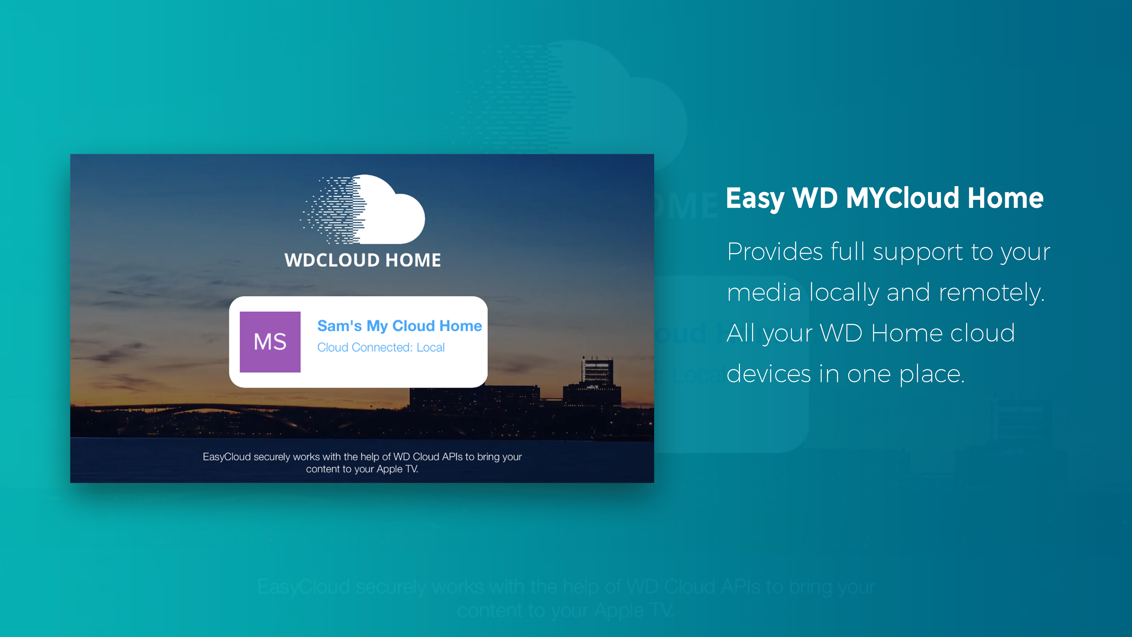 Easy WD MyCloud Home screenshot 13