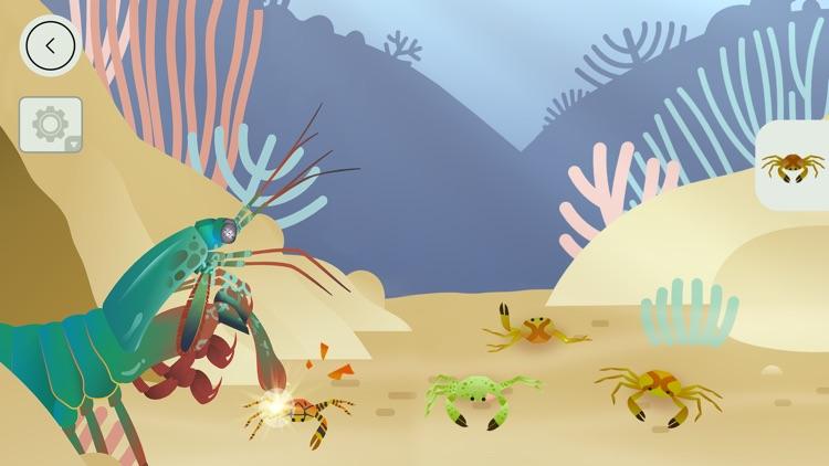 Coral Reef by Tinybop