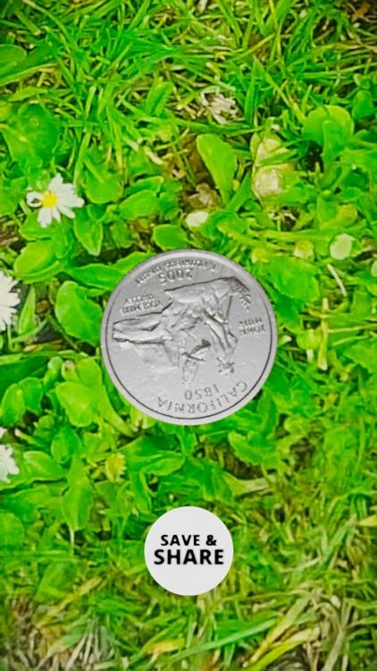 3D Coin Toss screenshot-4