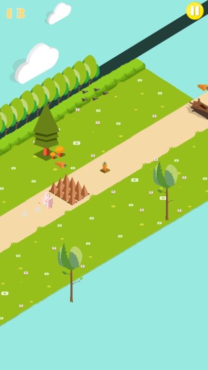 Run Sunny Bunny Run! screenshot-3