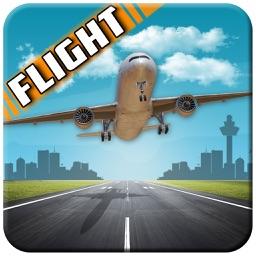 Pilot Airplane Flight 3D