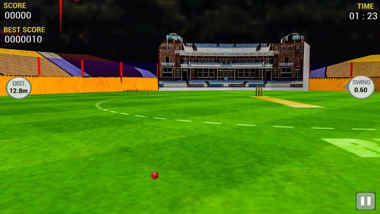 Cricket Run Out 3D screenshot-3