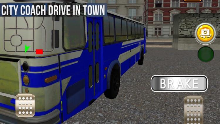 Coach Bus Driver
