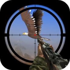 Activities of Forest Birds Hunter 3D