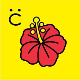 沖縄県LHR向けCARADA