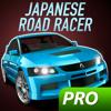Alexander Sivatsky - Japanese Road Racer Pro artwork