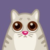 Cat Power – Animated Stickers