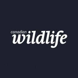 Canadian Wildlife Magazine