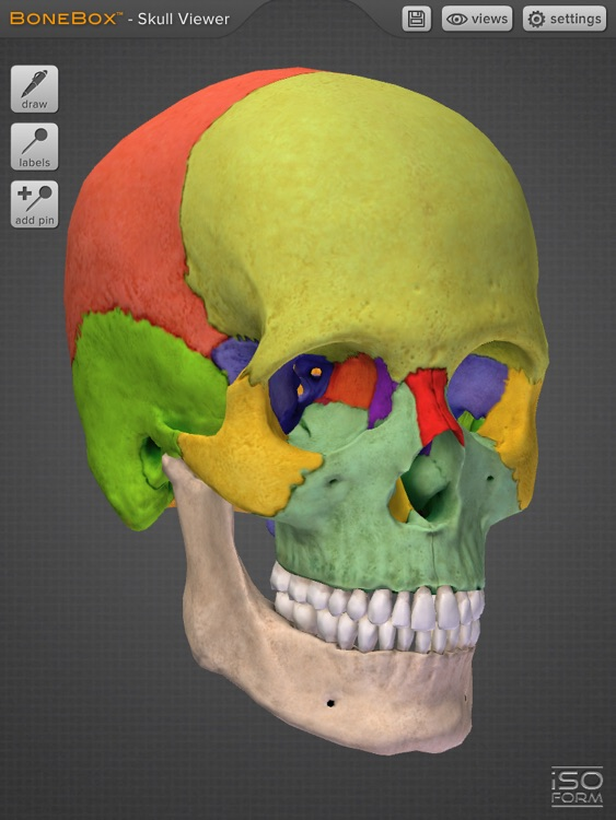 BoneBox™ - Skull Viewer screenshot-3