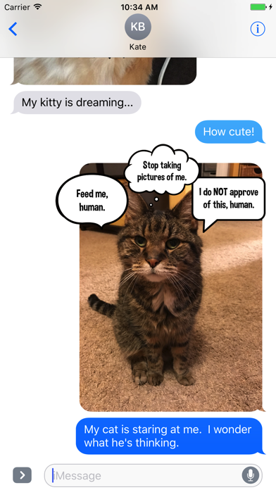 Kitty Thoughts Sticker Pack screenshot three