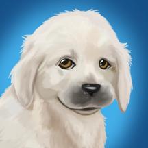 PetWorld: Animal Shelter