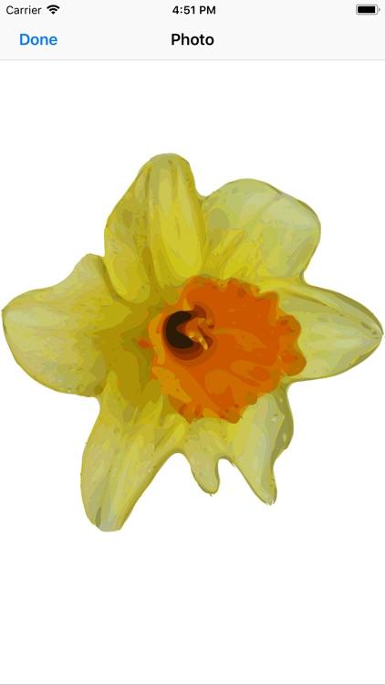 Daffodil Sticker Pack