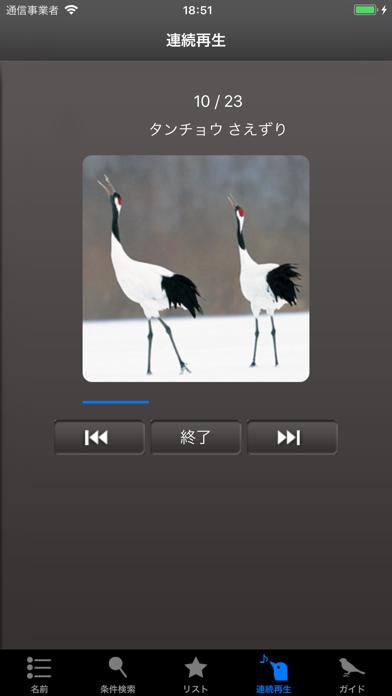 野鳥の鳴き声図鑑 ScreenShot5
