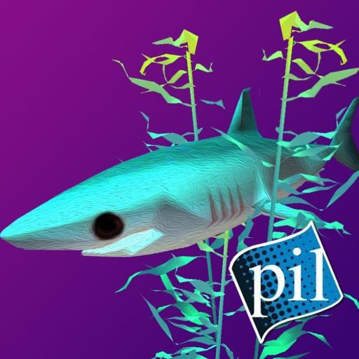 PI VR Oceans