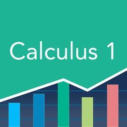 Calculus 1: Practice & Prep