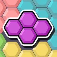 Codes for Block Puzzle : Hexa Hack