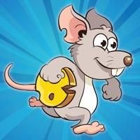Codes for Mouse Mayhem - Maze Challenge Hack