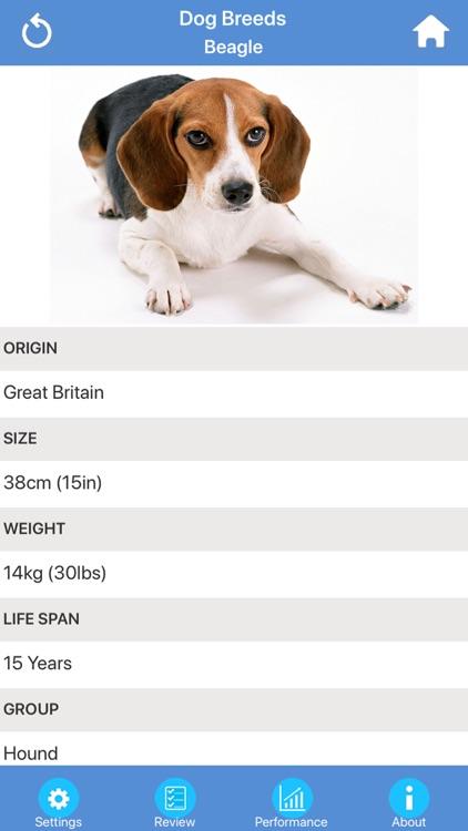 Dog Breeds Quizzes screenshot-6